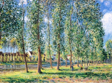 The Row of Poplar Trees in Moret 1888