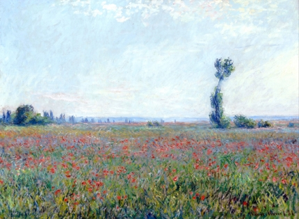 Poppy Field (Champ De Coquelicots) 1881