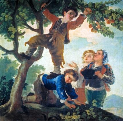 Boys picking fruit 1778