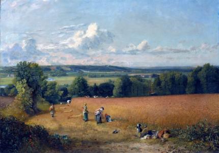 The Wheat Field 1816