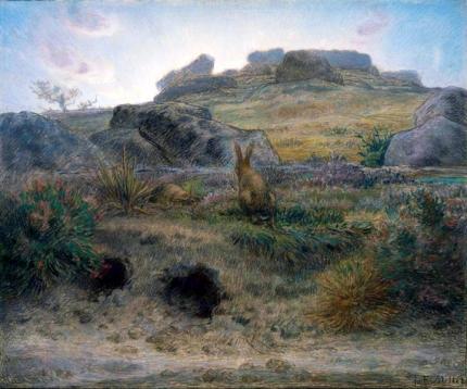 Rabbit Warren, Dawn