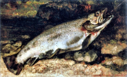 The Trout 1872