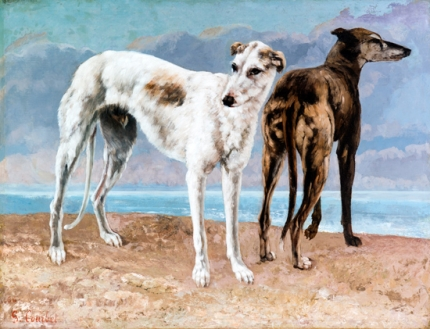 The Greyhounds of the Comte De Choiseul 1866