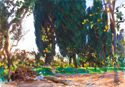 Vines and Cypresses 1909