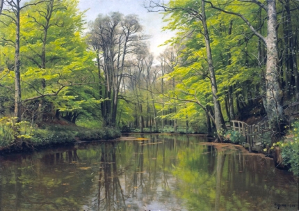 A tranquil forest lake 1904