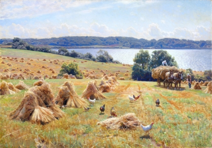 View from Tulstrup at lake Knudsø. The crops are brought in from the fields on a sunny day 1932