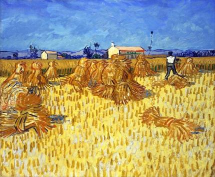 プロヴァンスの収穫