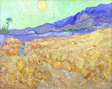 刈る人のいる日の出の麦畑
