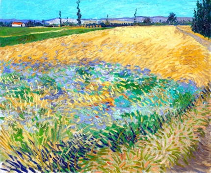 Wheat Fields-Alpilles Foothills In The Background 1888