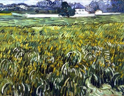 白い家のあるオーヴェルの麦畑