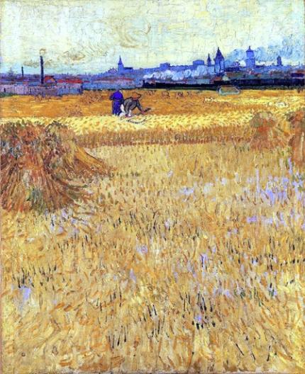 アルル:麦畑からの眺め