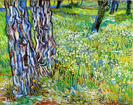 サン=ポール病院の庭の松の木とタンポポ