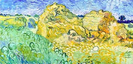 小麦の山のある畑