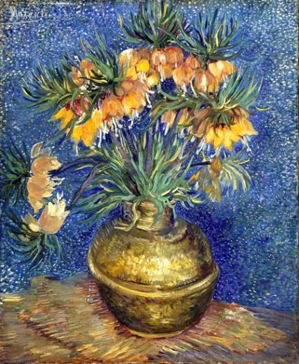 銅の花瓶のアミガサユリ