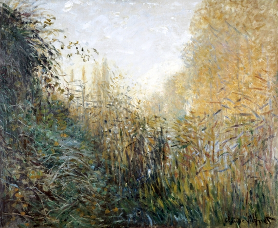 Etude De Joncs by Claude Monet