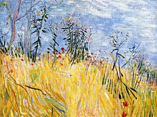 Edge Of A Wheat Field With Poppies by Vincent Van Gogh