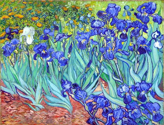 Irises 1889 by Vincent Van Gogh