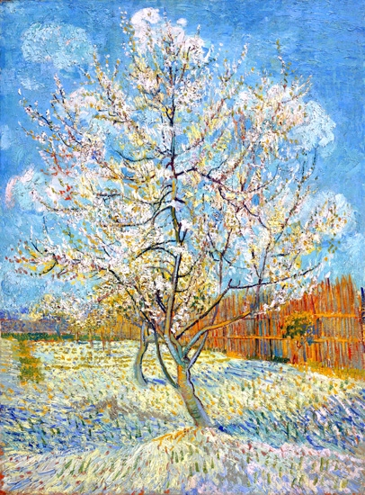 The Pink Peach Tree 1888 by Vincent Van Gogh