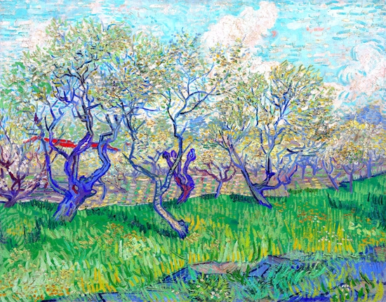 Orchard In Blossom 1889 by Vincent Van Gogh