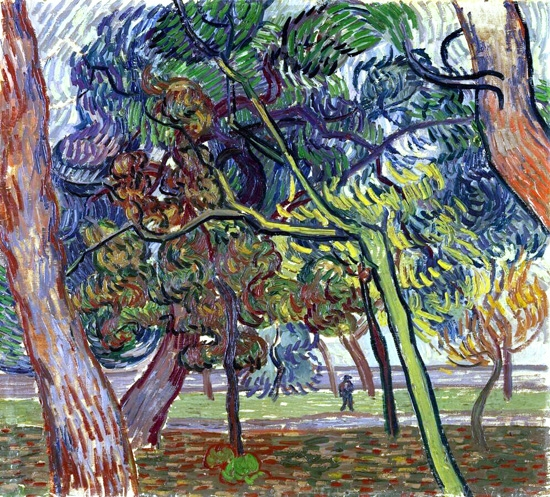 Pine Trees In The Garden Of The Asylum by Vincent Van Gogh