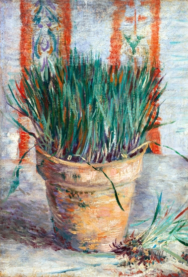 Flowerpot With Garlic Chives by Vincent Van Gogh